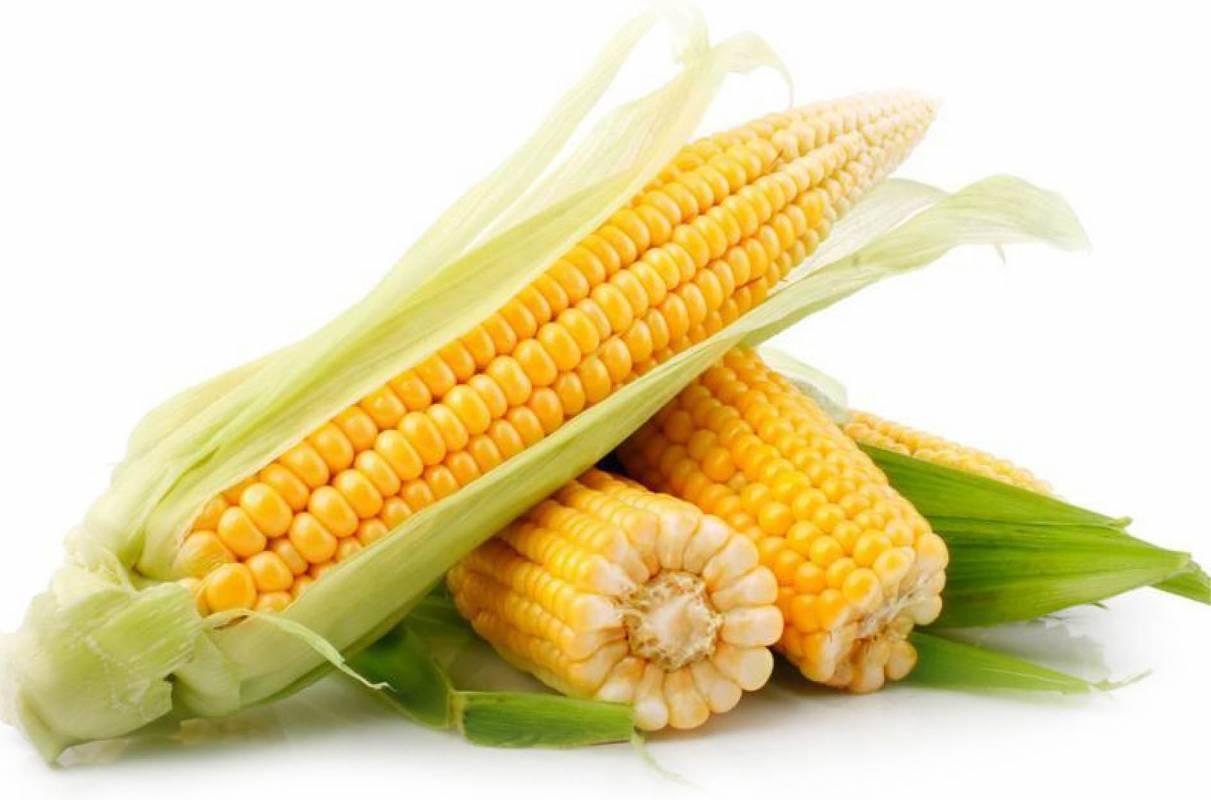 Maïs doux (350g)