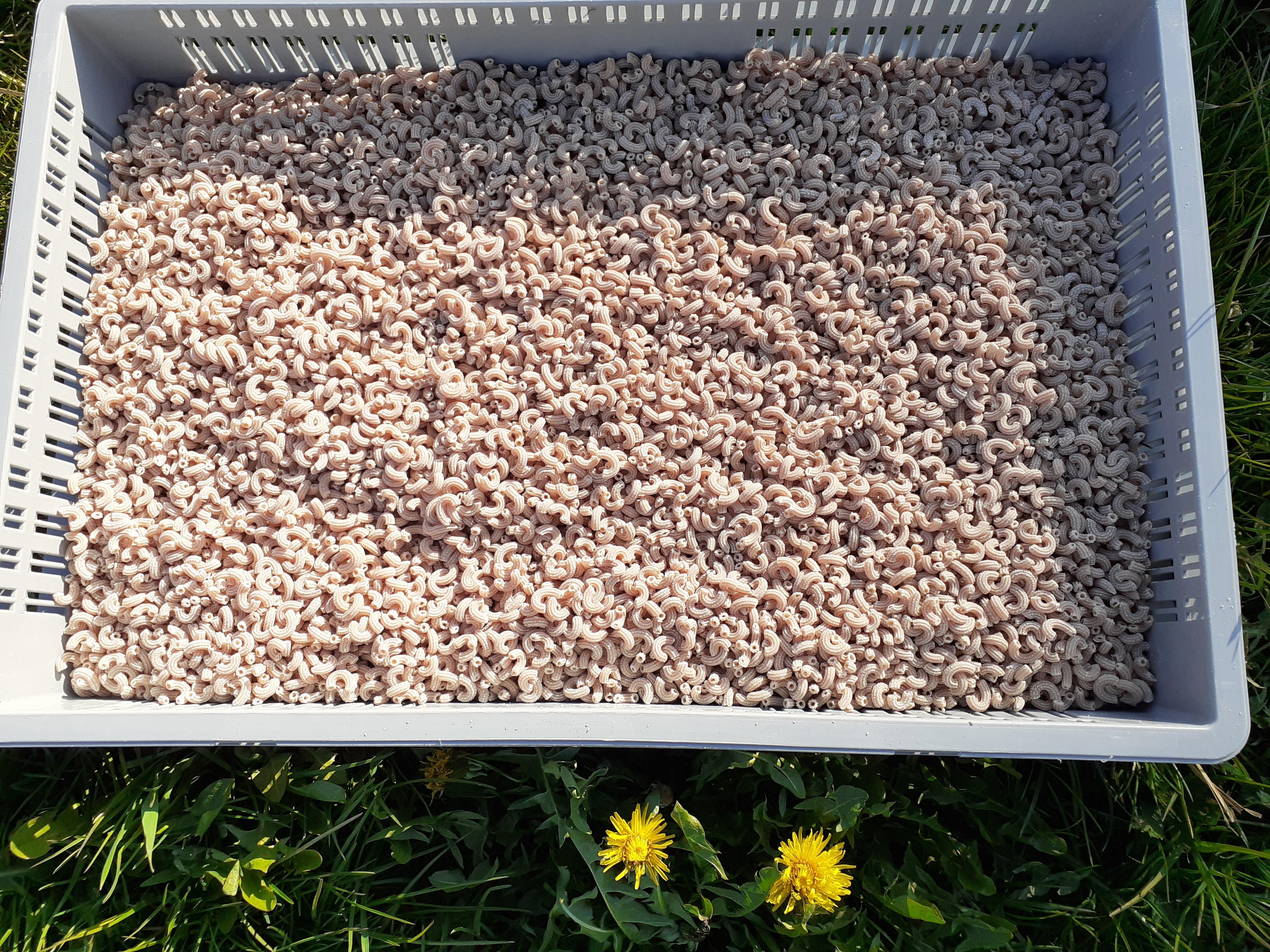 Cornettes au soja (500g)
